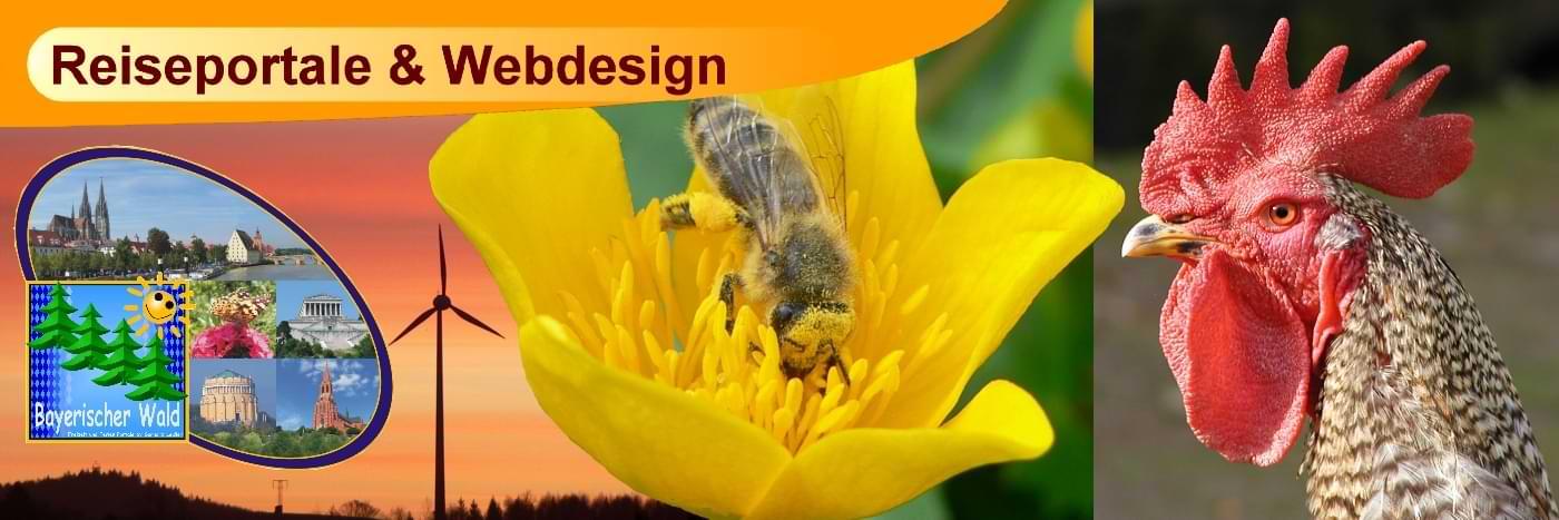 Webdesign & Flyerdesign